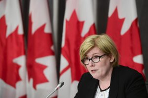 Two-year EI review needed to buy time for needed tech upgrades, Qualtrough says
